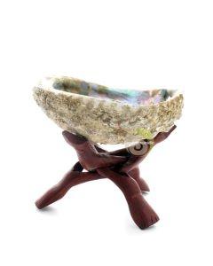 Abalone pour fumigation avec trépied