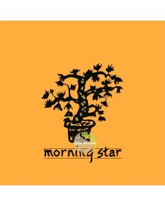 Encens japonais Morning star ambre