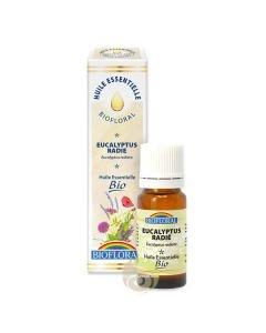 Eucalyptus radié Bio huile essentielle utiliser, connaitre et acheter
