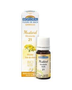Fleur de Bach N°21 moutarde (mustard) sans alcool