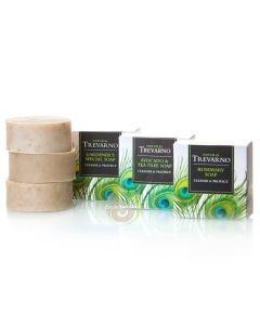 Savon avocat & arbre à thé